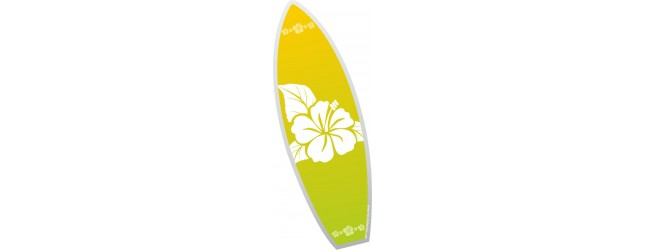 Surf / Stand Up Paddle / VTT